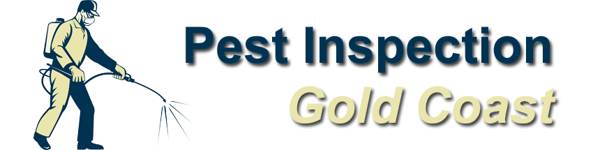 Pest Inspection Gold Coast
